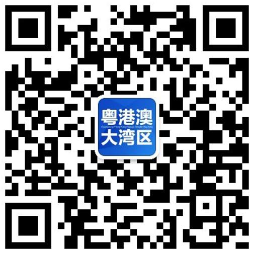 粤港澳大湾区门户网微信