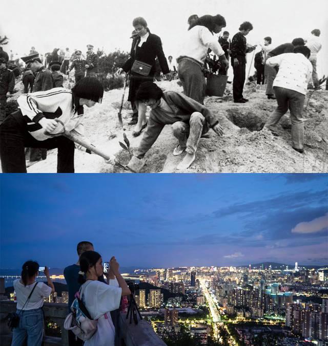 上图:1985年,全市机关干部义务在板樟山上植树;下图:2020年,傍晚,市民和游客在板樟山上乘凉看风景