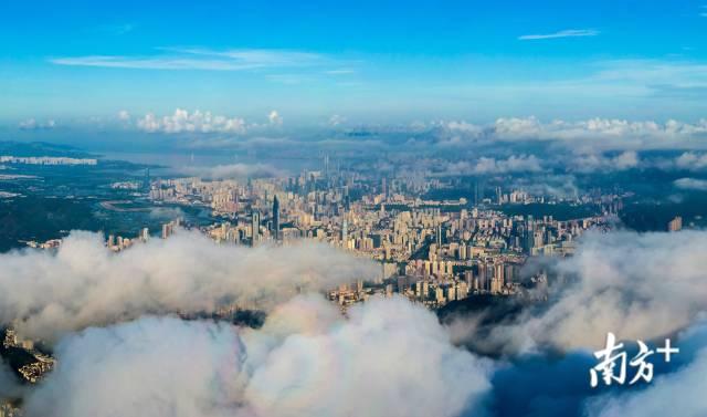2020年8月,云端上俯瞰深圳市区。40年来,深圳从默默无闻的边陲小镇到拥有2000万人的现代化国际都市。